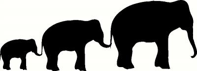 3 Elephants Wall Sticker Vinyl Decal The Wall Works