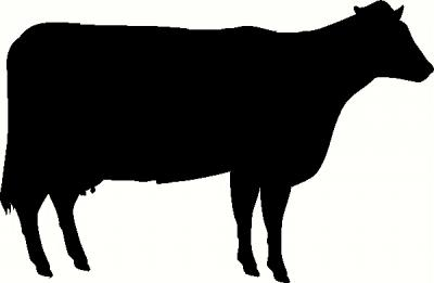 Cow vinyl decal