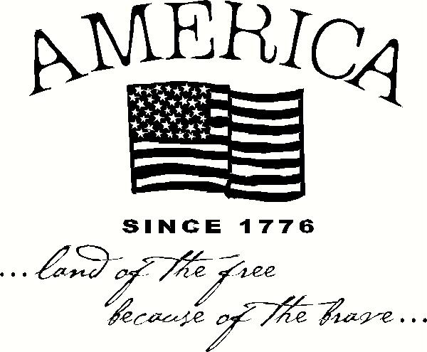 America Since 1776 Wall Sticker Vinyl Decal The Wall Works
