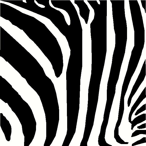 Zebra vinyl decal