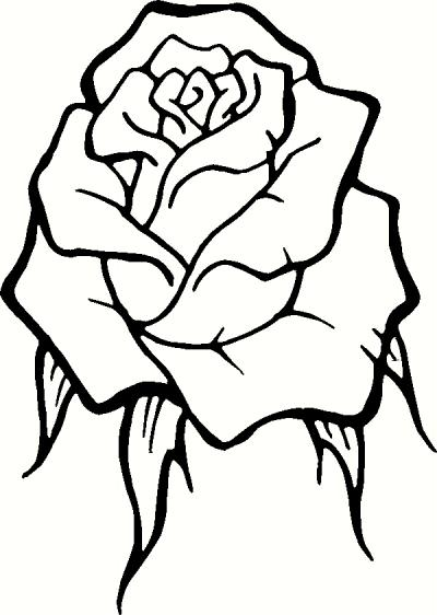 Art Outline Drawings Rose Flower Outline Drawings