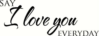 Say I Love You Everyday (2) vinyl decal