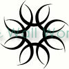 Spin Star vinyl decal