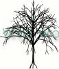 tree (10) vinyl decal