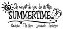 What do you do in the summertime vinyl decal