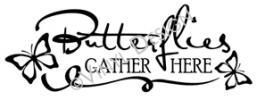Butterflies Gather Here vinyl decal