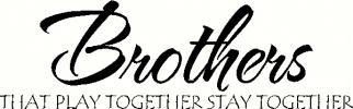Brothers - Play Together (2) vinyl decal