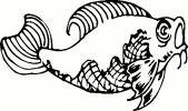 Fish (11) vinyl decal