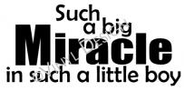 Such a Big Miracle in Such a Little Boy vinyl decal