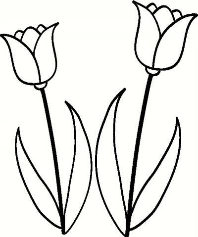 Custom vinyl lettering tulip set vinyl decal the wall